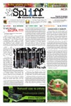 # 5 Gazeta Konopna Spliff
