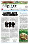 # 15 Gazeta Konopna Spliff