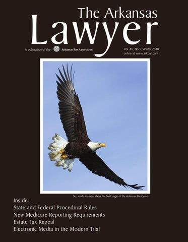 arkansas-lawyer-winter10