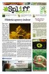 # 29 Gazeta Konopna Spliff