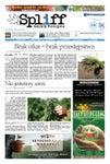 # 32 Gazeta Konopna Spliff