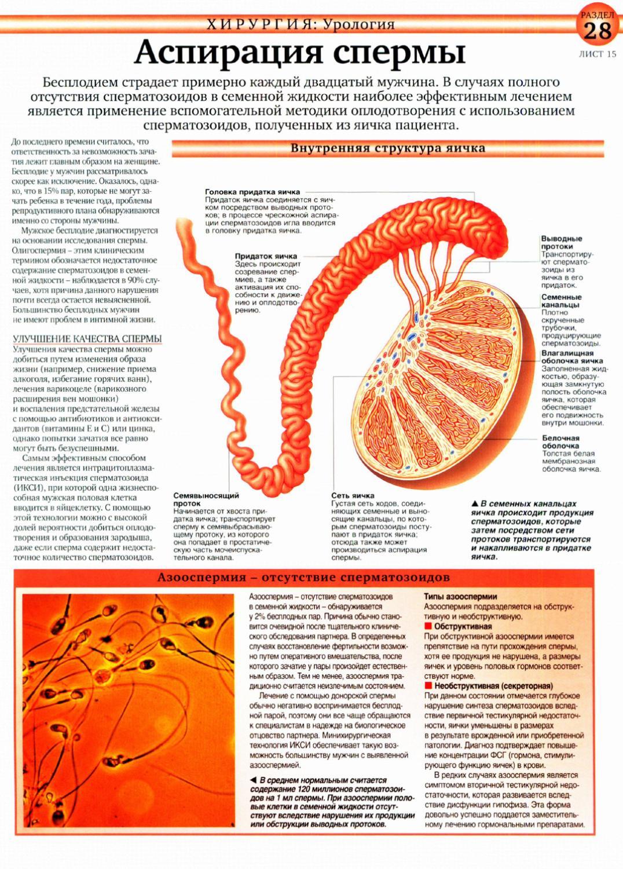 sostav-spermi-cheloveka