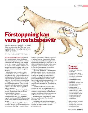 Tidningen apoteket nummer 1 2012