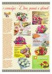 1 сентября - День знаний и цветов