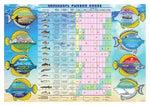 Календарь рыбной ловли