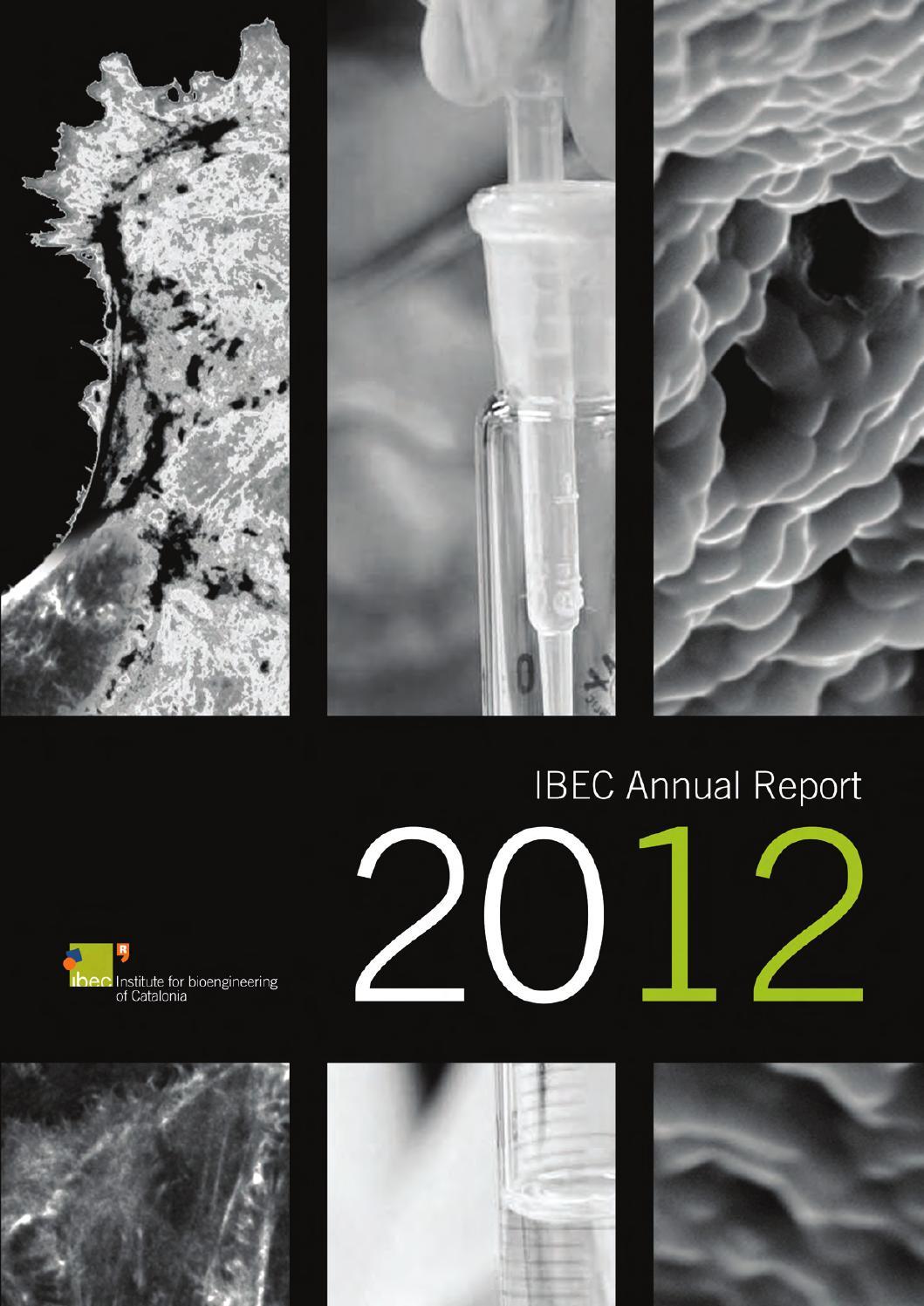 bioengineering report