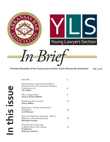 yls_inbrief_june2013