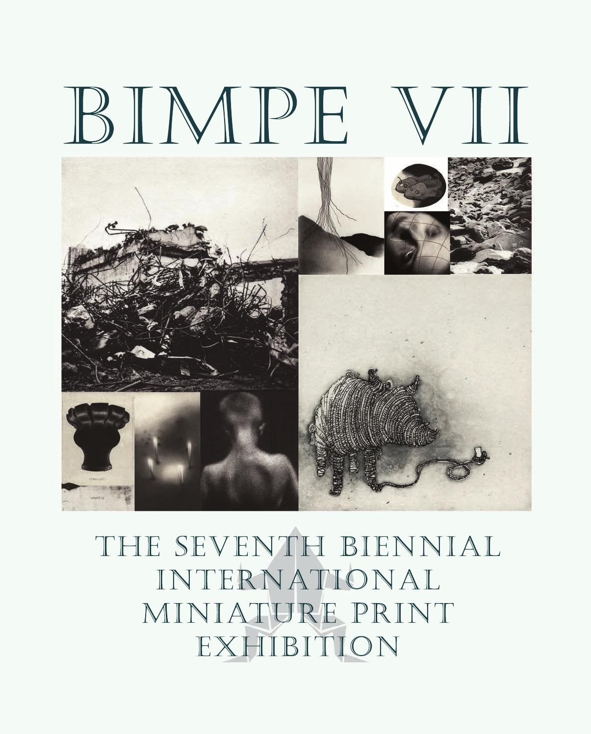 Bimpe VII Exhibition Catalogue by Peter Braune - issuu