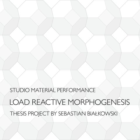 LOAD REACTIVE MORPHOGENESIS - THESI PROJECT BY SEBASTIAN BIAŁKOWSKI