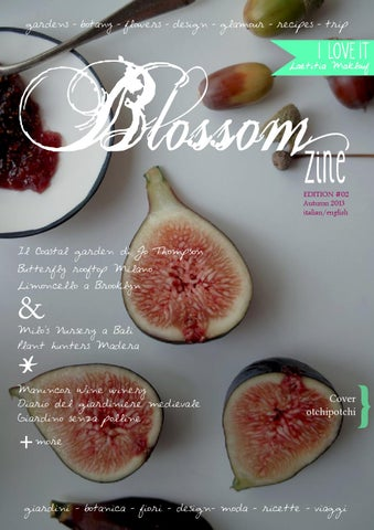N 2 autumn 2013 blossom zine cover