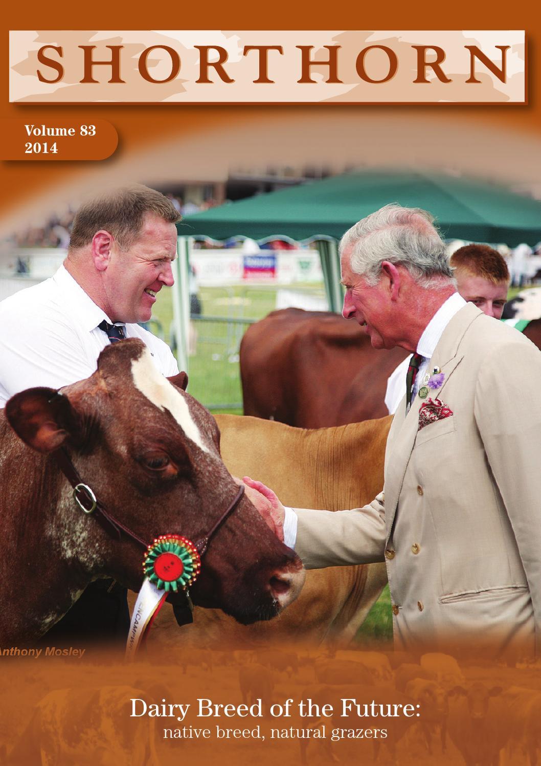 ISSUU - Dairy Shorthorn Journal 2014 by alan peedle
