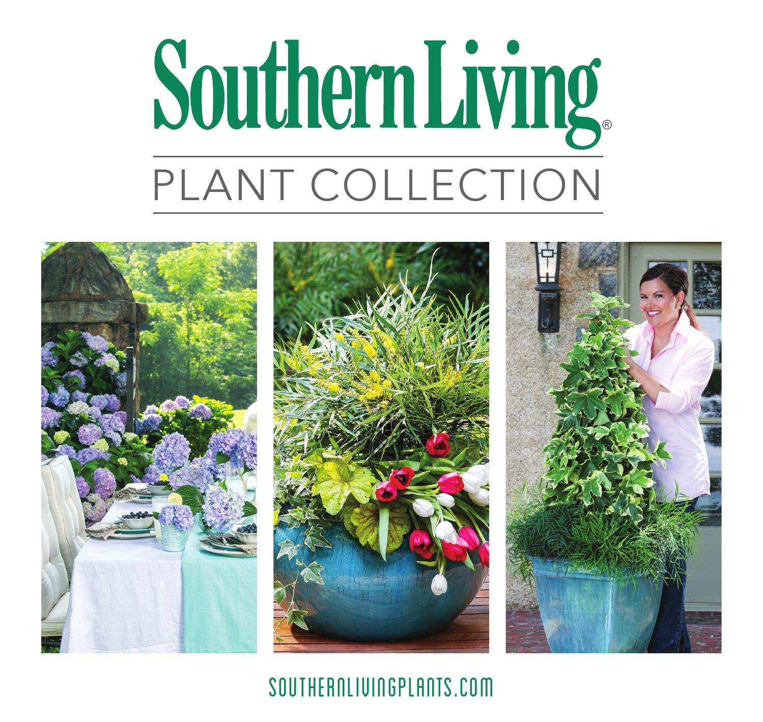 Southern Living Plant Collection : ISSUU - Southern living plant collection brochure 2014 by ...