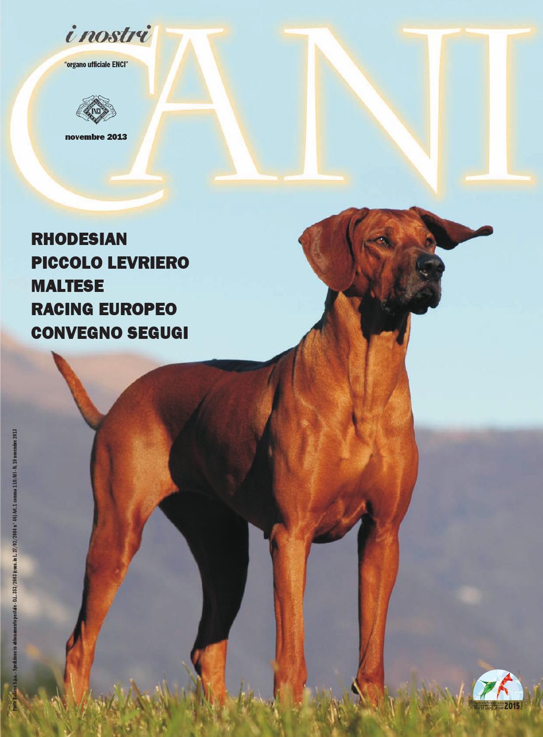 ISSUU - I Nostri Cani - novembre 2013- by ENCI - Ente Nazionale ...