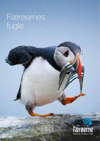 Färöarnas fåglar