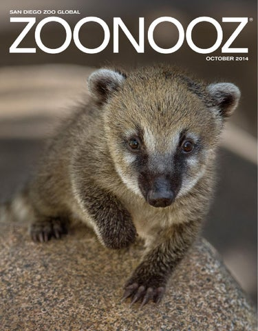 October 2014 ZOONOOZ cover