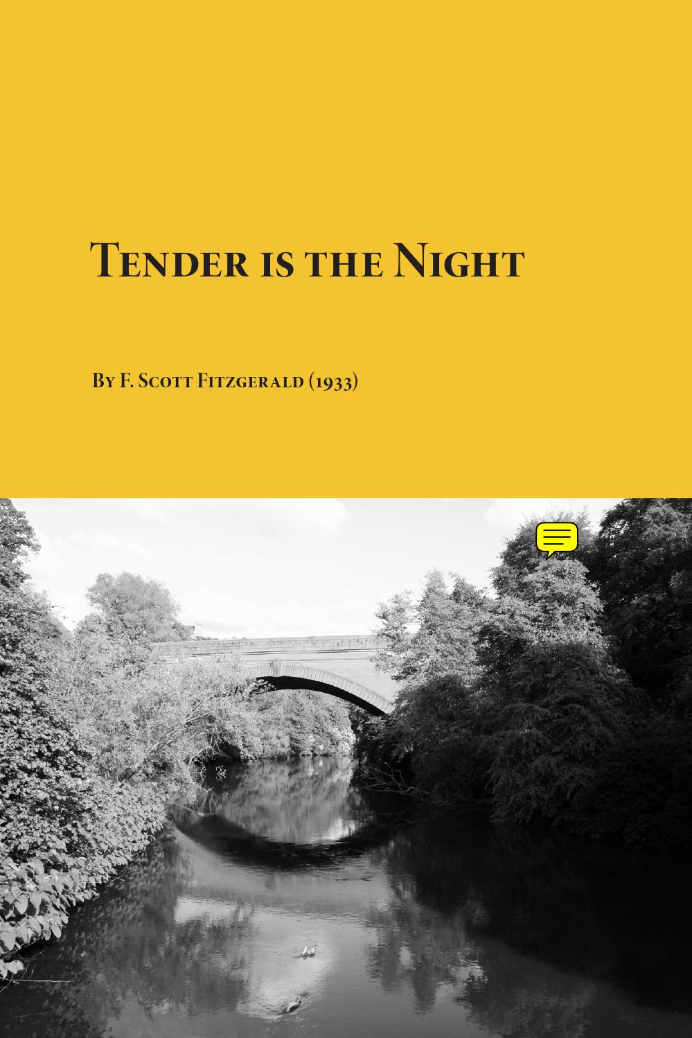tender is the night book response essay