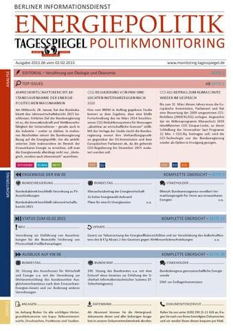 Tagesspiegel Politikmonitoring zur Energiepolitik