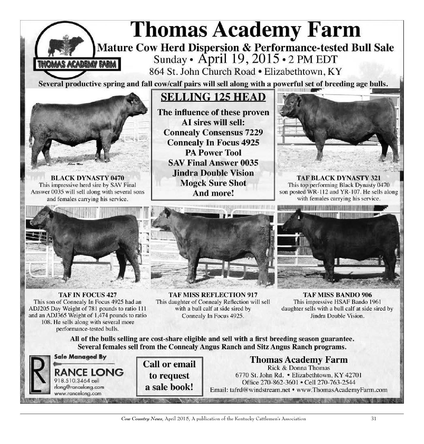 the kentucky cattlemans association essay Agribusiness association of kentucky provides four $1,000 scholarships to   kentucky cattlemen's association offers several scholarships.