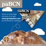 Revista PaBCN 539