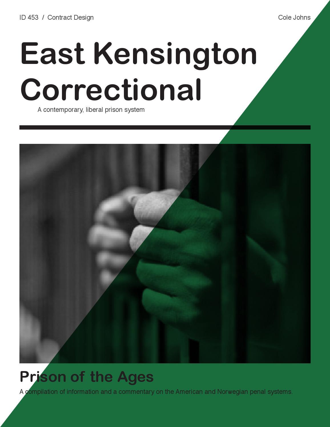 prison studies essay