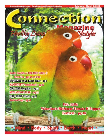 Connection Magazine February 2016 Issue
