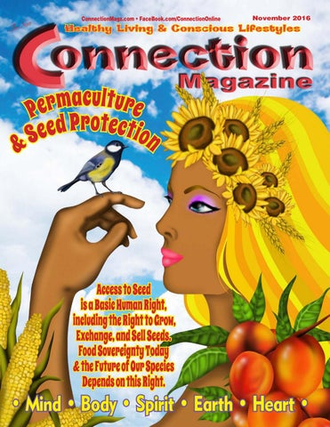 Connection Magazine November 2016 Issue