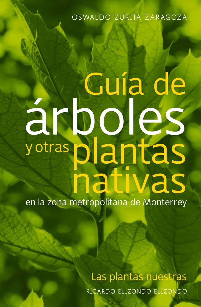 Guia de arboles by Florisa Orendain - issuu: https://issuu.com/24design/docs/guiadearboles