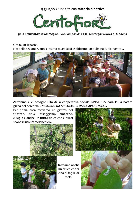 fattoria didattica business plan