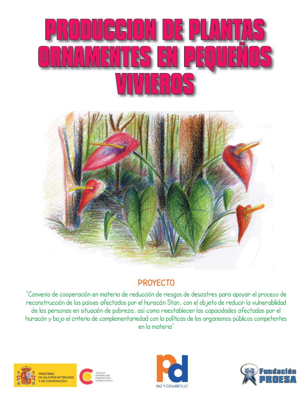 Cartilla produccion de plantas ornamentales en peque os for Produccion de plantas ornamentales