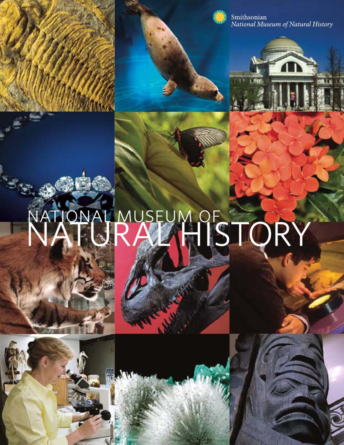 Museum Of Natural History Brochure