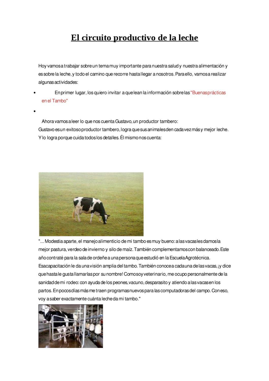 Circuito Productivo De La Leche : El circuito productivo de la leche by mariana iec issuu