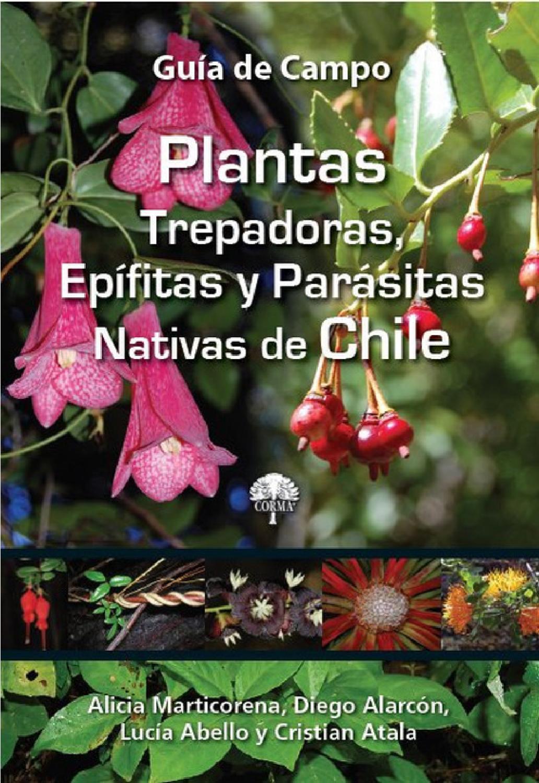 plantas trepadoras ep fitas y par sitas nativas de chile