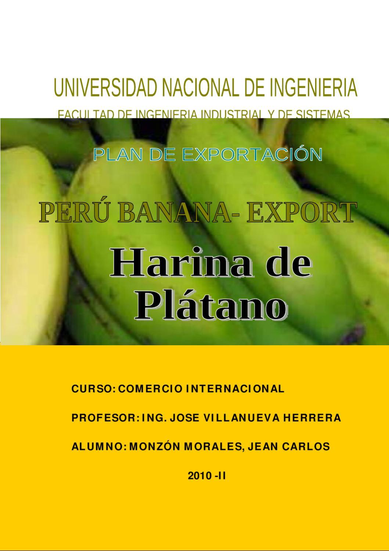 Plan de exportacion de Harina de Platano by jean carlos