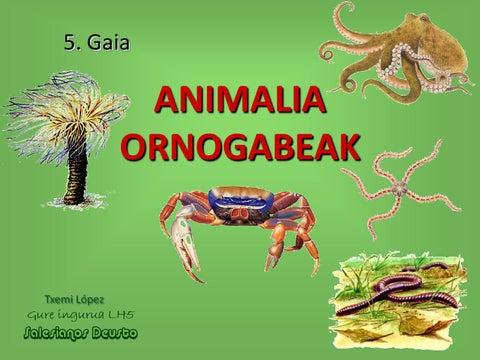 Animalia ornogabeak