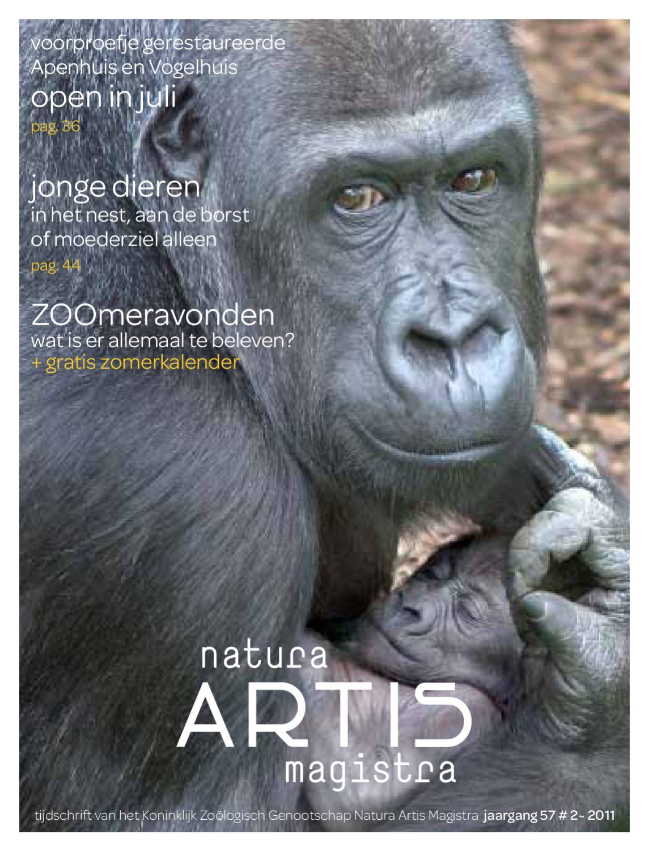 Artis #3 2011 gecorrigeerd10 by van lennep   issuu