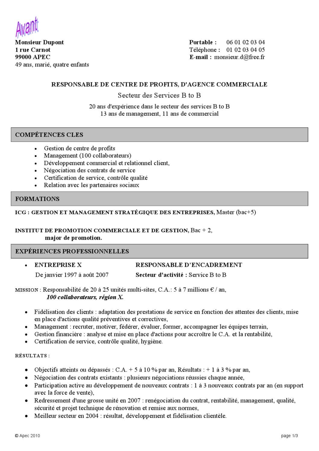 cv responsable de profit by apec