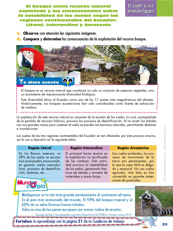 Naturales 7 by quito ecuador page 33 issuu for Recurso clausula suelo