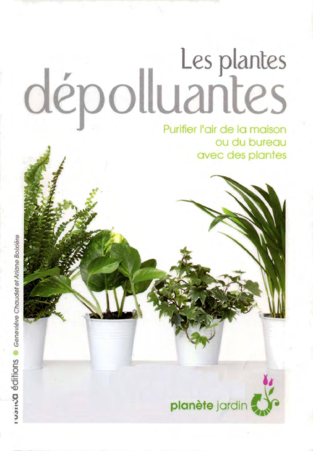 les plantes depolluantes by carrascosa francine issuu