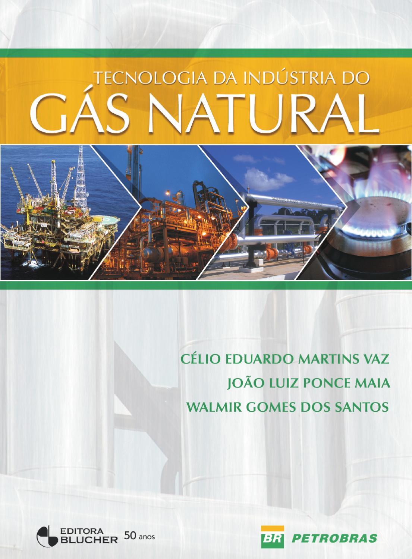 Tecnologia Da Indústria Do Gás Natural By Editora Blucher