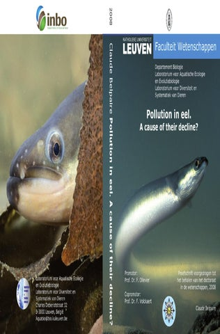 Pollution in eel : a cause of their decline