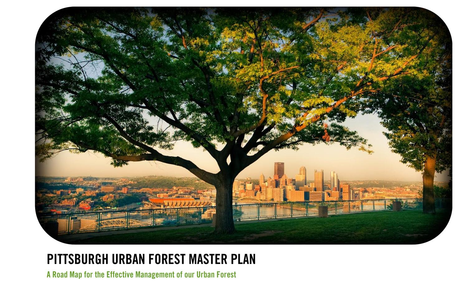 Pittsburgh Urban Forest Master Plan By Tree Pittsburgh Issuu