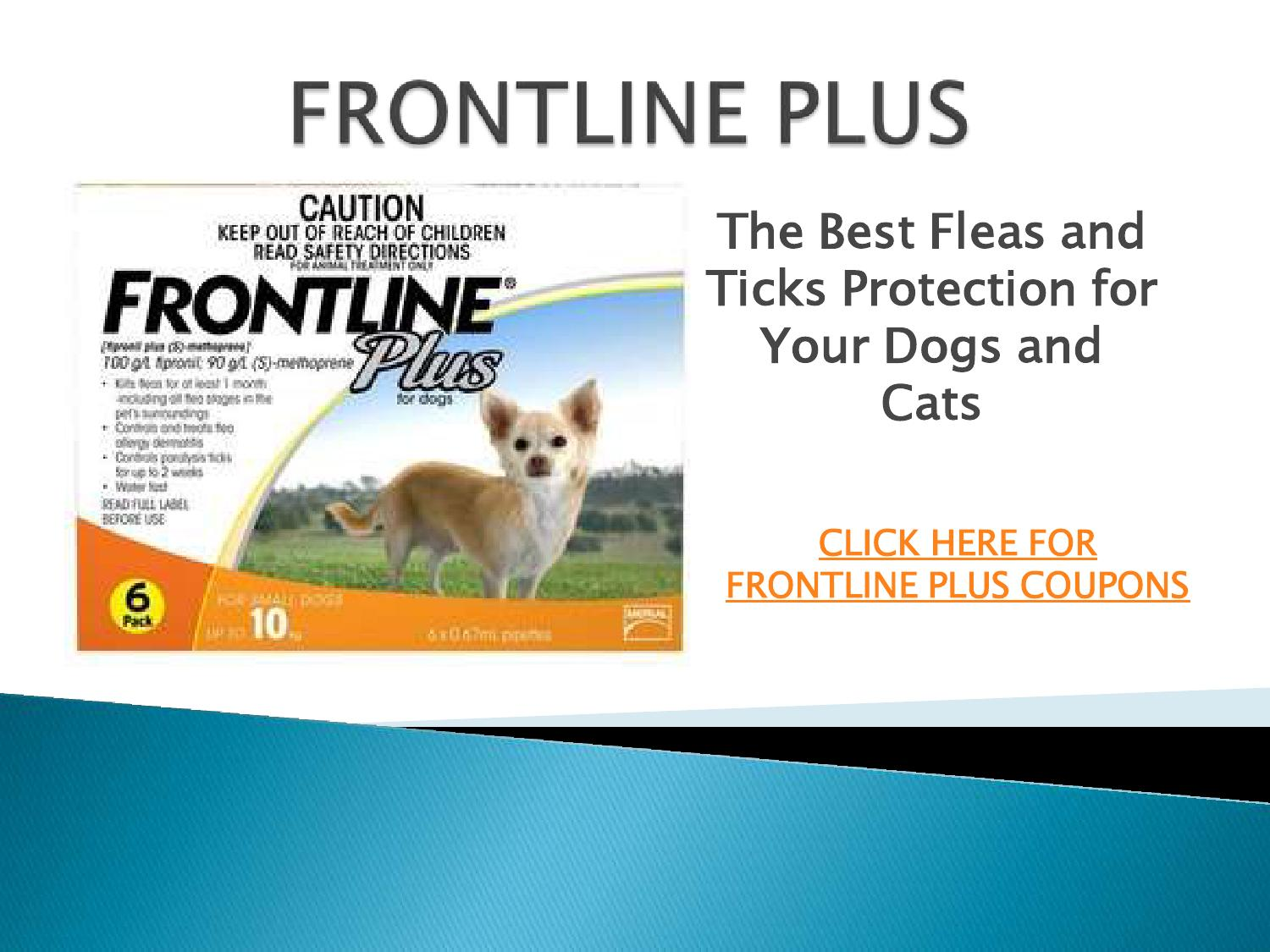 image about Bravecto Printable Coupons called Coupon for frontline - Osborne chiropractic