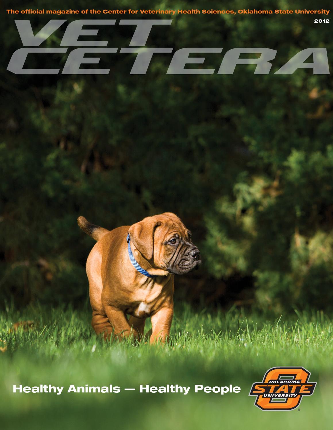 pvm report 2013 annual report by purdue university issuu vet cetera magazine 2012