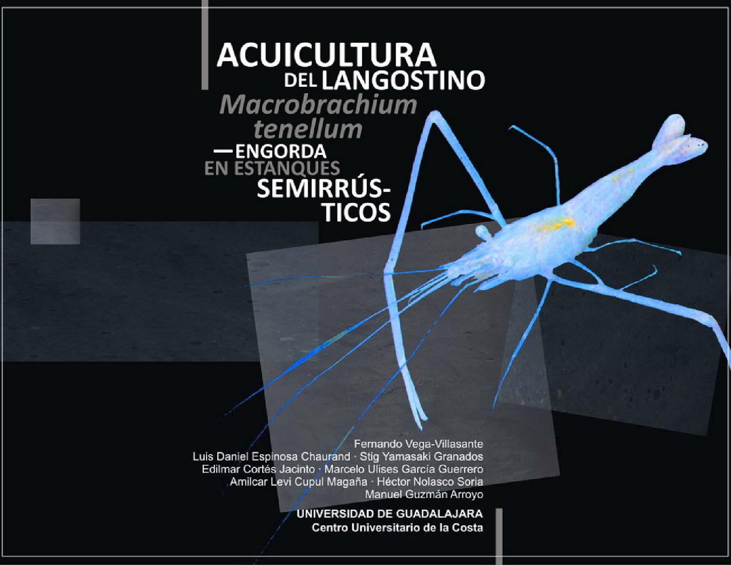 Acuicultura del langostino macrobrachium tenellum by for Manual de acuicultura pdf