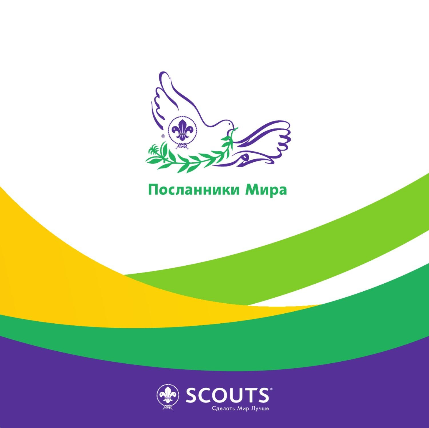 the world organization of the scout