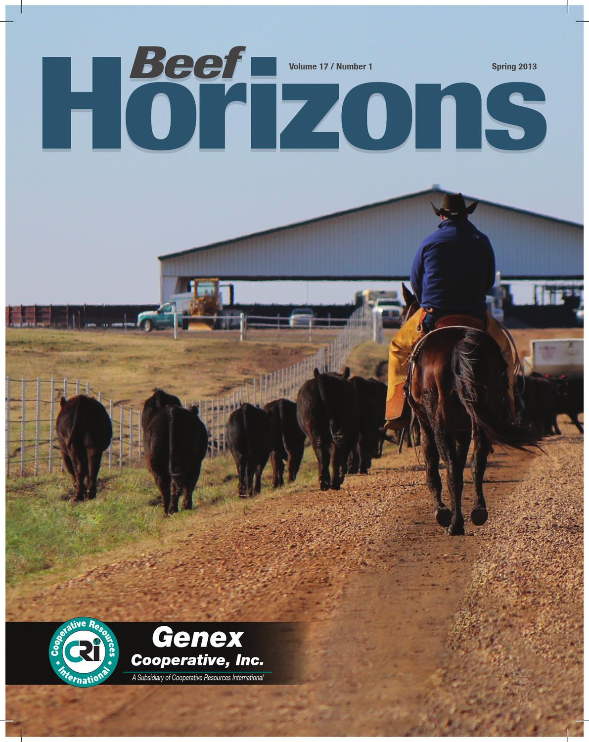 Cattle on feed report commentary on genesis