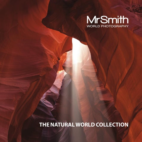 The Natural World Collection