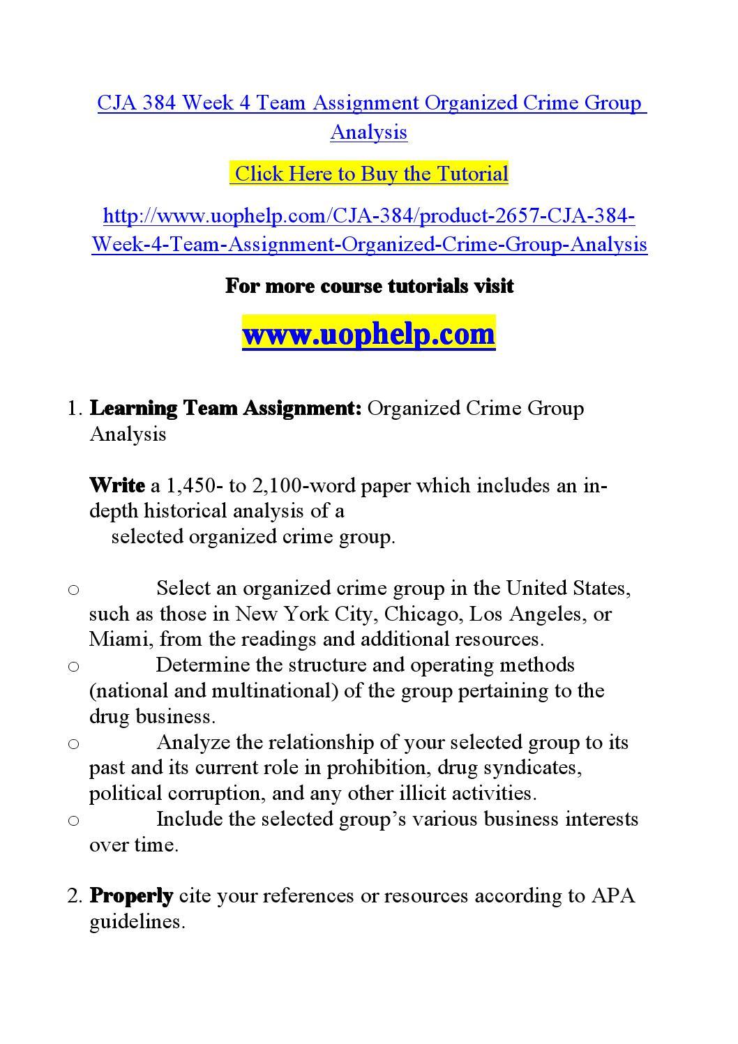 socia organized crime perspective