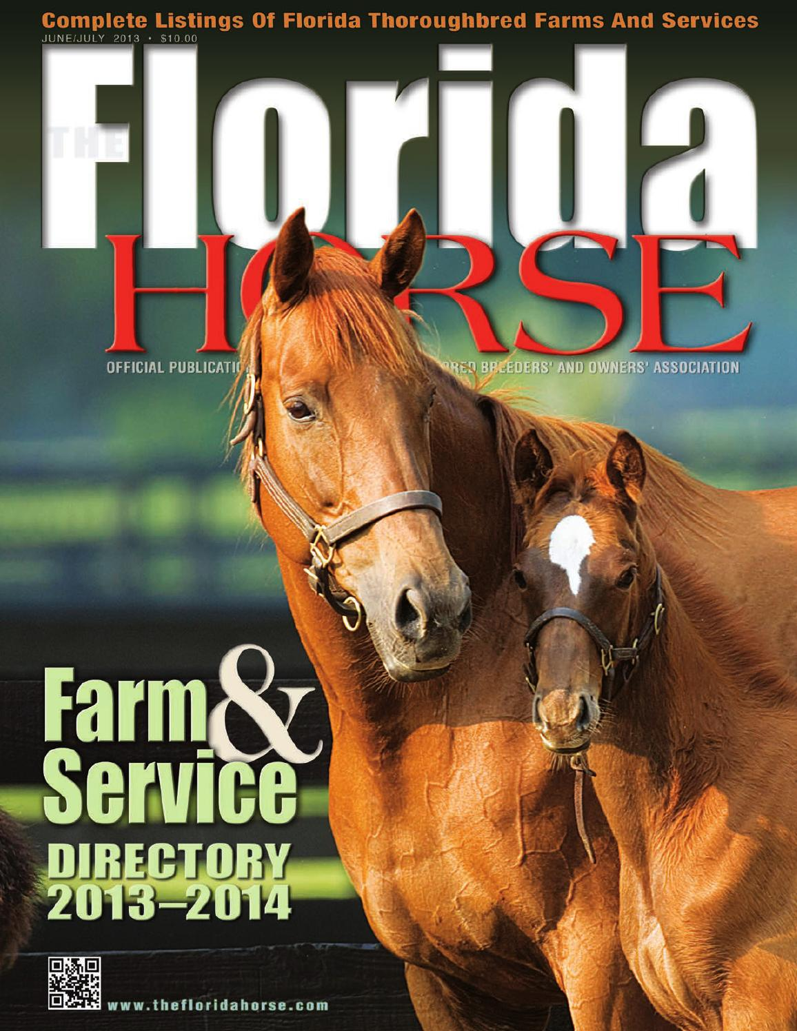 Junejuly 2013 Florida Horse Farm Amp Service Directory By