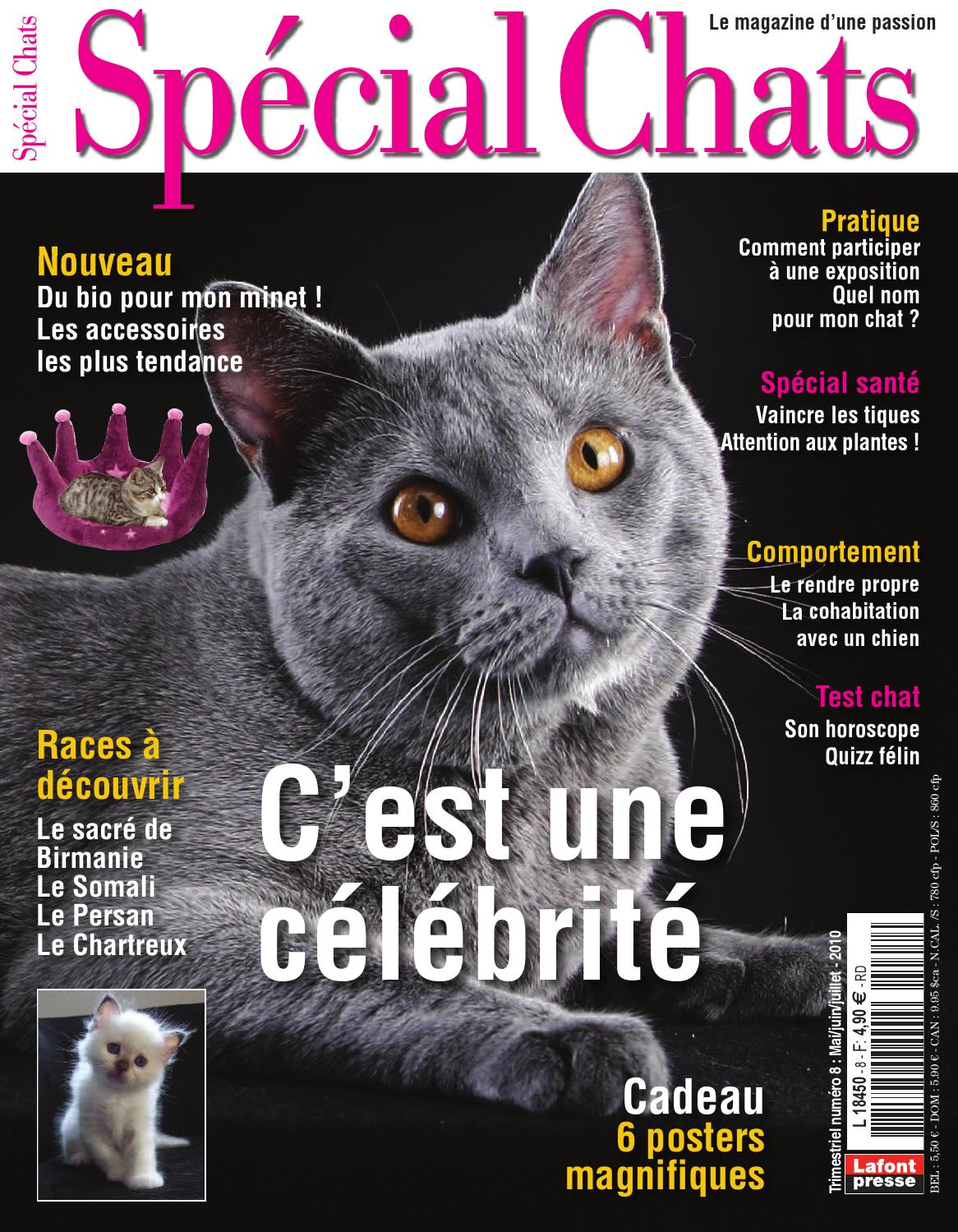 Special Chats 8 by Fabien Tourneur - issuu